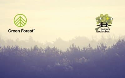 Green Forest y Bosques Sostenibles