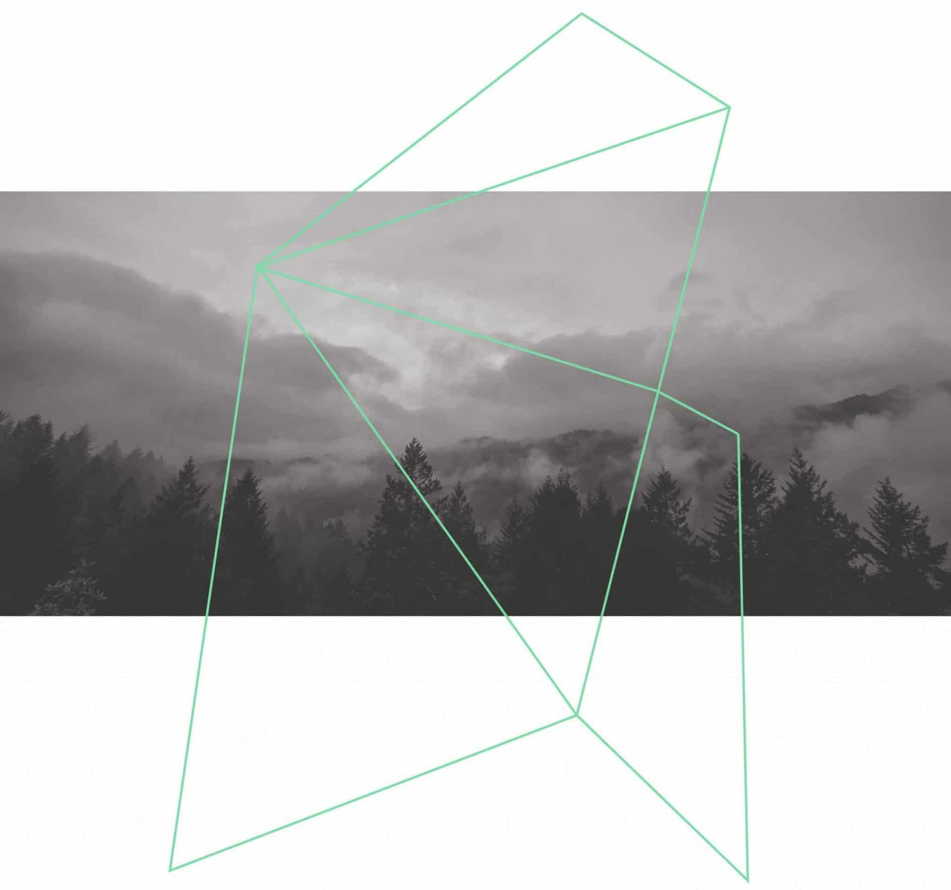 Inspiración de diseños en naturaleza y geometría