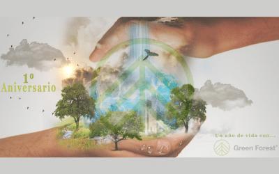 UN AÑO DE GREEN FOREST…¡UN AÑO DE VIDA!