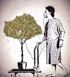 Tu árbol de regalo con la compra de una prenda green forest wear