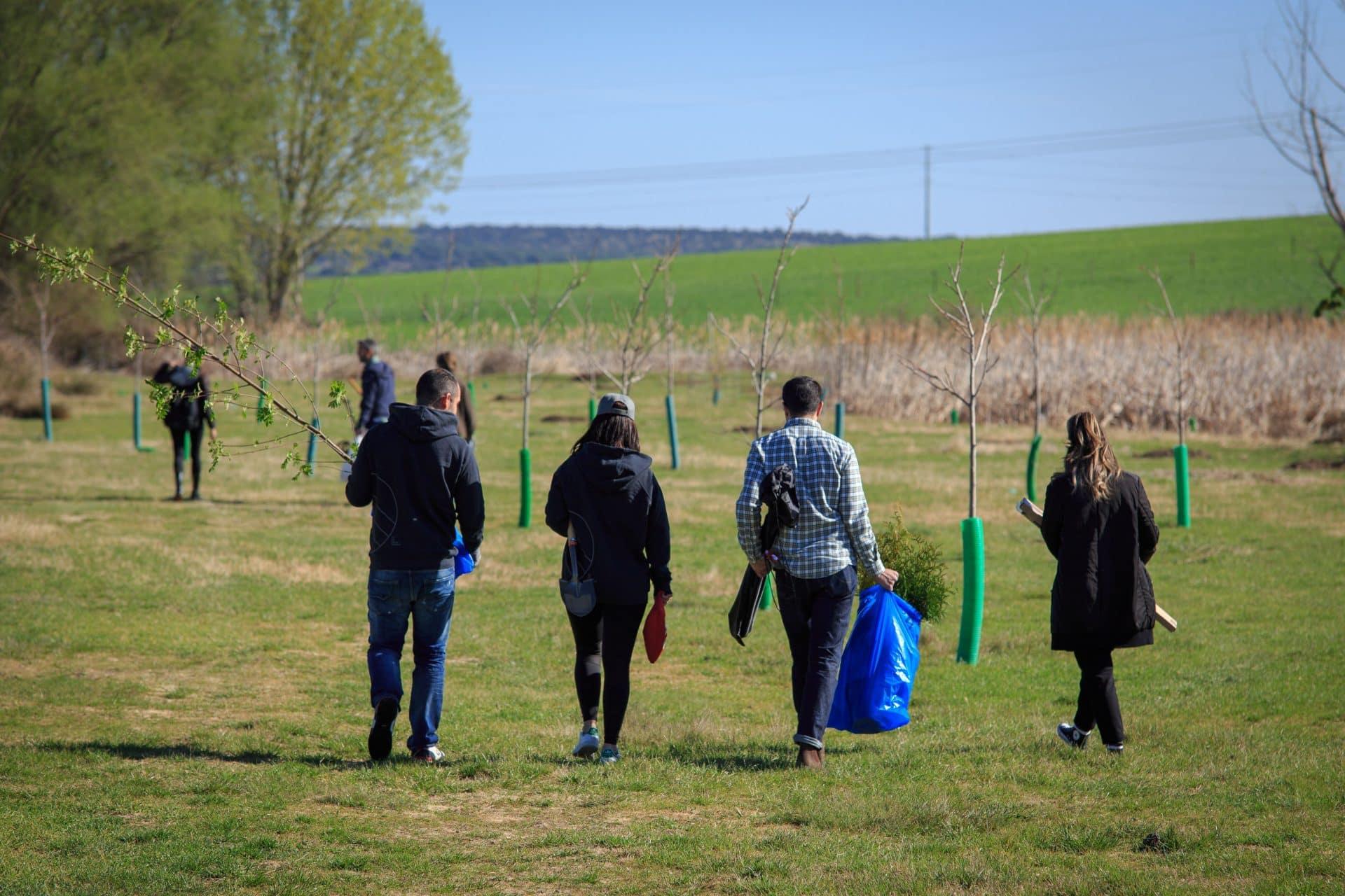 green forest wear compromiso medio ambiente sostenibilidad